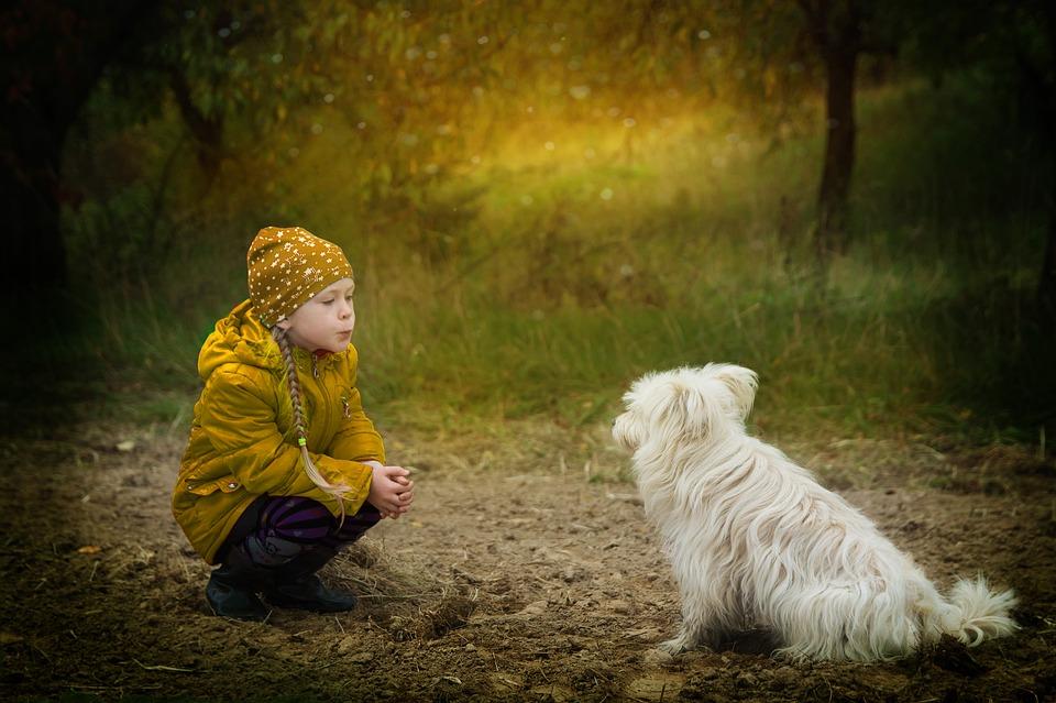 cane bambina - LE RELAZIONI INTERPERSONALI NEL TRIBUNALE INTERNO